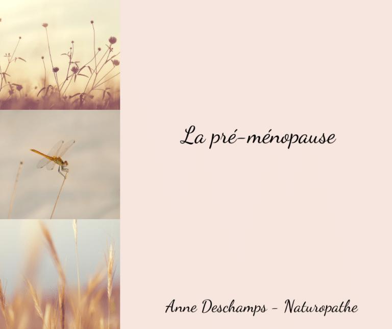 Read more about the article 🌸 Lα pré-мéɴopαυѕe 🌸
